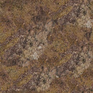 Autumn Harvest Granite