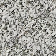 Branco Coral Granite