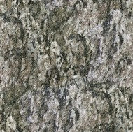 Dorato Valmalenco Granite