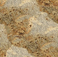 Giallo Cristal Granite