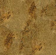 Golden Classic Granite