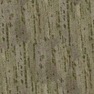 Green Pantanal Granite