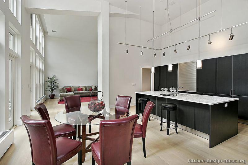 Pictures of Kitchens  Modern  Black Kitchen Cabinets (Kitchen #20)