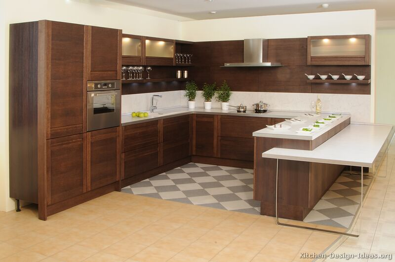 Pictures of kitchens modern dark wood kitchens for Dark cabinet kitchen ideas
