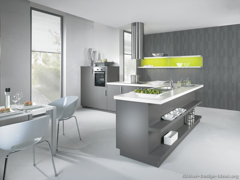 Modern Grey And White Kitchens pictures of kitchens - modern - gray kitchen cabinets