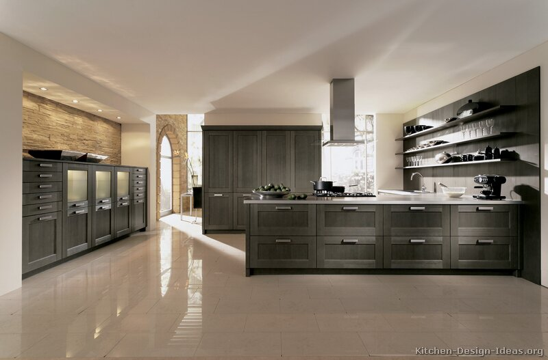 Pictures of Kitchens Modern Gray Kitchen Cabinets (Kitchen #6)