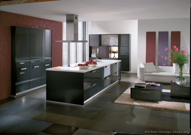 Pictures of kitchens modern gray kitchen cabinets for Modern kitchen designs gallery