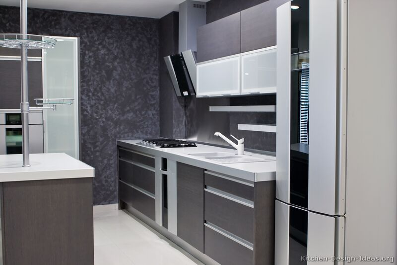 Pictures of Kitchens  Modern  Gray Kitchen Cabinets
