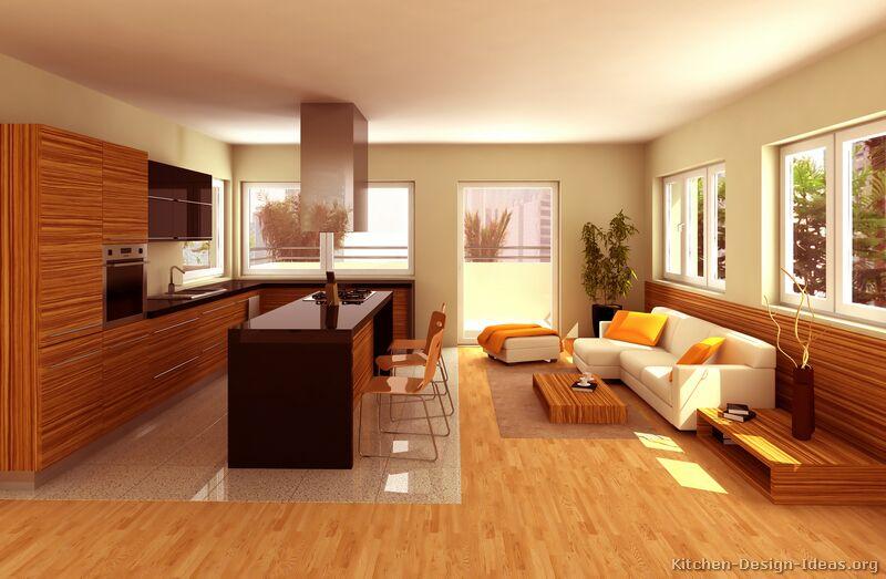 Modern Zebra Wood Kitchen Cabinets - Sarkem.net