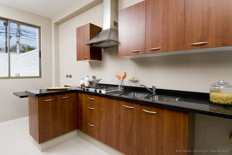 Modern Kitchen Cabinet Doors pictures of kitchens - modern - medium wood kitchen cabinets