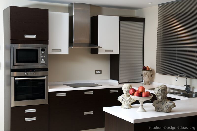 Pictures of kitchens modern black kitchen cabinets for Black kitchen cabinet design ideas