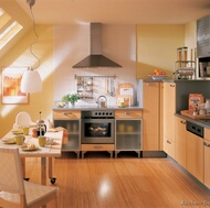 European Style Kitchens
