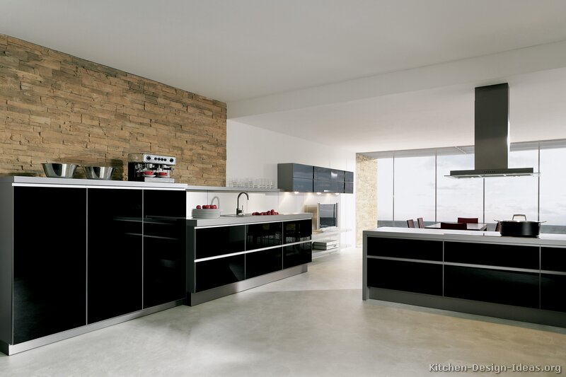 Kitchen Modern Black pictures of kitchens - modern - black kitchen cabinets (page 2)