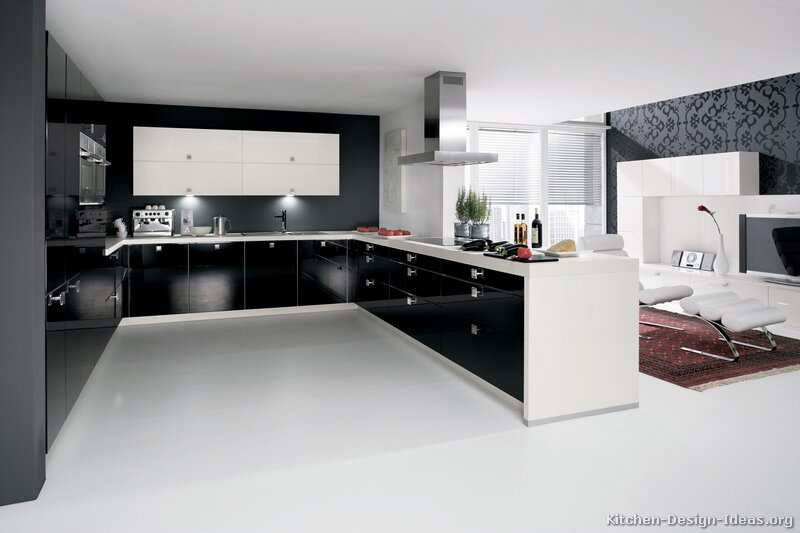 a black and white kitchen with contemporary cabinets - Contemporary Kitchen Design Ideas
