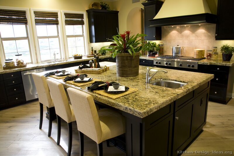 Pictures of kitchens traditional black kitchen for Traditional dark kitchen cabinets