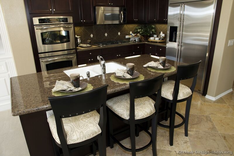 Kitchen Designs Ideas Pictures Kitchen Design Pictures Dark Cabinets