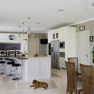 Open Plan Kitchen, Island Bar, and Canine Companion - Woodale Designs