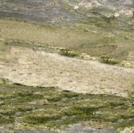 Verde Cascada Granite