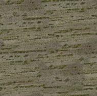 Verde Pantanal Granite