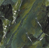 Granite Countertop Colors (Vitoria Regia shown)
