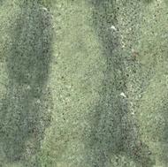 Wild Green Granite