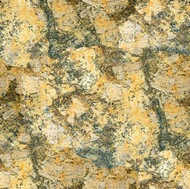 Yellow Cactus Granite